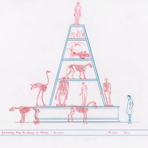 Mark Dion: Anatomy: The Academy of Things - Dresden, 2014