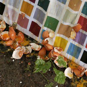 Kochperformance von a.ACHAT kitchen & The Category, Hamburg, am 12. Juni 2018. Claude Schötz und Hannes Bröcker (a.ACHAT kitchen) sowie Marian Kaiser (The Category) Veranstaltung im Rahmen der Ringvorlesung: Zwölf Vorträge zu 1968. Von künstlerischen Praktiken und vertrackten Utopien, Sommersemester 2018. Ort: Kunstgeschichtliches Seminar (Vorplatz), Universität Hamburg, Edmund-Siemers-Allee 1, 20146 Hamburg, Germany. Initiiert von: Prof. Dr. Petra Lange-Berndt & Isabelle Lindermann (Wissenschaftliche Mitarbeiterin) Kunstgeschichtliches Seminar Universität Hamburg, Germany