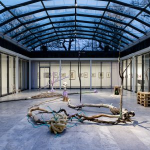 Marten Schech: Lichtung, 2020, Foto: Marten Schech