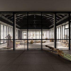 Marten Schech: Lichtung, 2020, Foto: Andreas Weiss